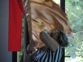 06-_28_Giugno_2015_Parco_Della_Divina_Misericordia_Centro_Convegni_Ges_Misericordioso___(17)