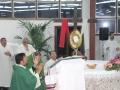 07- 25 Gennaio 2015 Parco Della Divina Misericordia Santa Messa e Adorazione .  (1)
