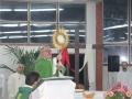 07- 25 Gennaio 2015 Parco Della Divina Misericordia Santa Messa e Adorazione .  (9)